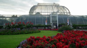 Kew Gardens Palm House 3