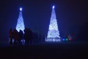Kew Gardens Christmas 10