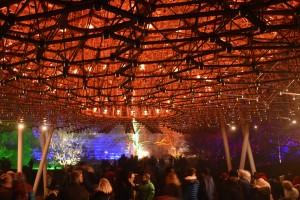 Kew Gardens Christmas 18