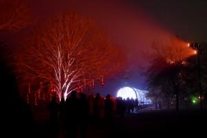 Kew Gardens Christmas 31
