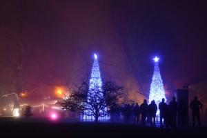 Kew Gardens Christmas 6