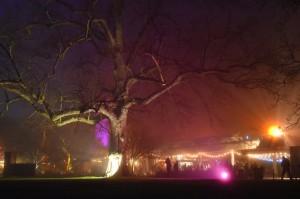 Kew Gardens Christmas 8