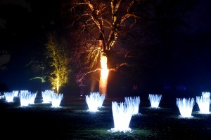 Kew Gardens Christmas 23